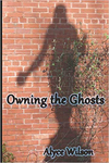 Owning the Ghosts cover
